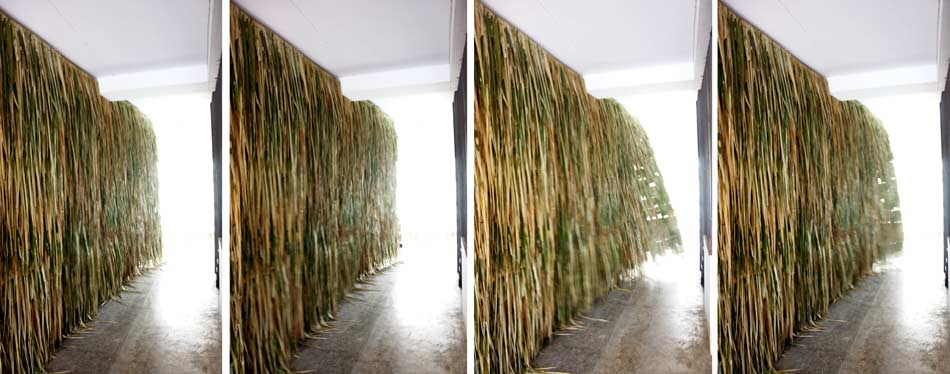 11-hairy-wall-moving-wind – architectkidd co. ltd.